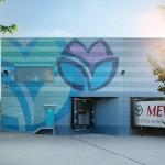 MEWA celebra el día del medio ambiente mostrando actitud y compromiso diario